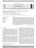 Experimental study of the bio-oil production from sewage sludge by supercritical conversion process