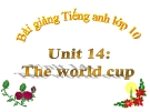 Bài giảng Tiếng Anh 10 unit 14: The World cup