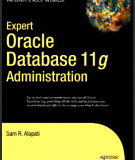 Ebook Expert oracle database 11g administration