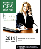 CFA Level 1 Schweser Notes 2014 - Book 2