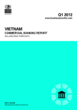 Vietnam commercial Banking report Q1 2012