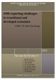 Tiểu luận: SME exporting challenges in transitional and developed economies