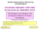 Human behavior in the social environment systems theory and the ecological perspective