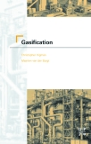 Ebook Gasification - Gasification Chris Higman and Maarten van der Burgt